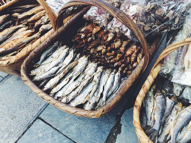 fish-895552_640